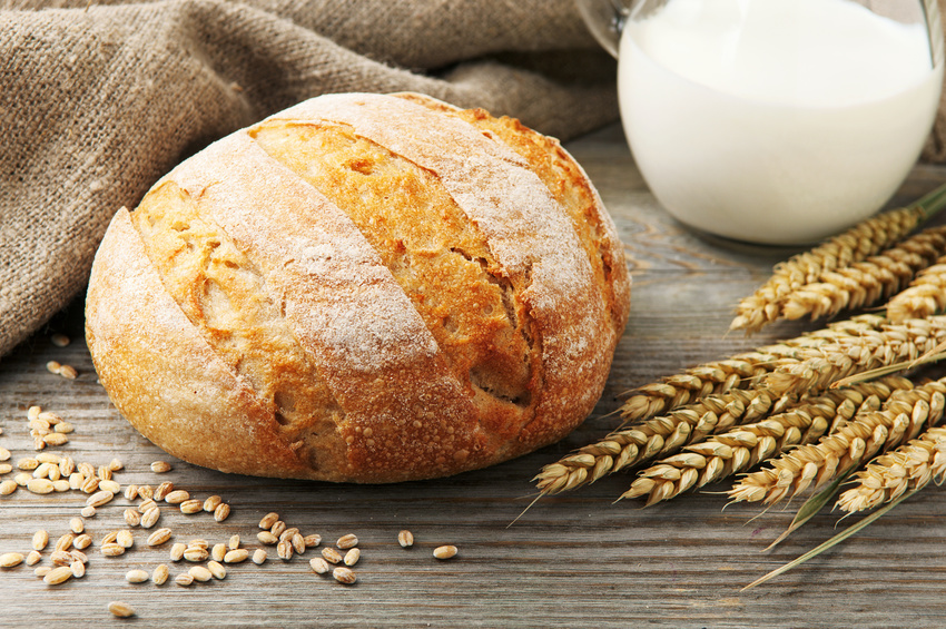 freshly baked,homemade bread with spikelets of wheat and milk on a wooden table. rustic style. closeup