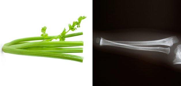 celery-bone
