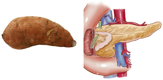 sweet-potato-pancreas3