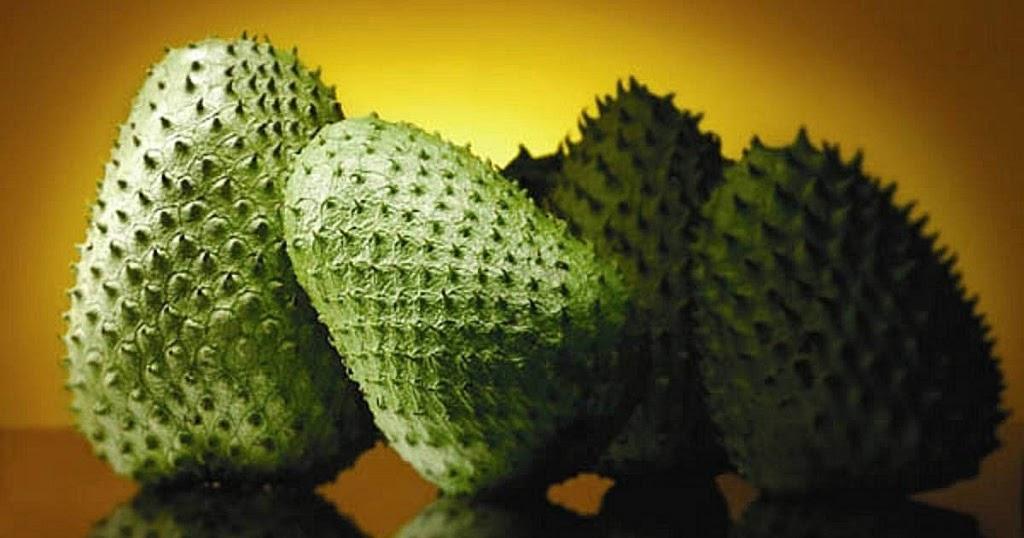 ungew hnliche tropenfrucht ist 1000 mal wirksamer gegen krebs als chemotherapie. Black Bedroom Furniture Sets. Home Design Ideas