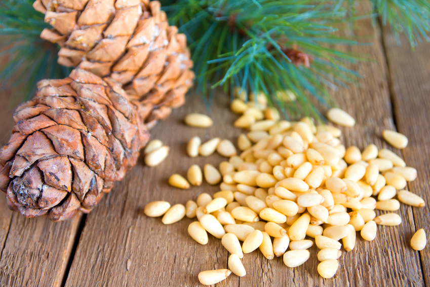 Pile of pine nuts with cones close up on rustic wooden background, horizontal