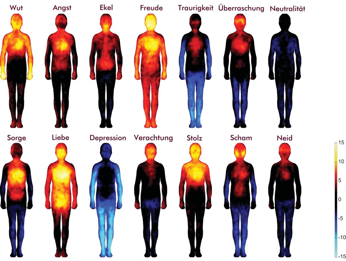 Anatomie der Gefühle - Wo spüren wir unsere Emotionen ...