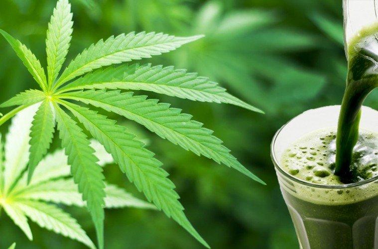 Marihuana verursacht Akne
