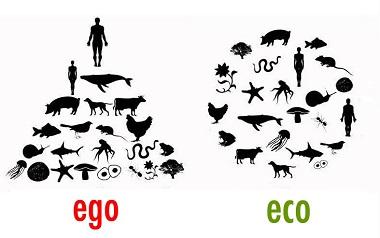 Mit-den-Tieren-leben