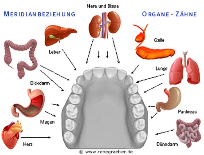 Zahnstörfelder1