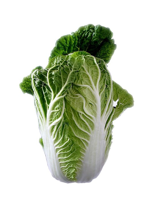 chinese-cabbage-74360_960_720
