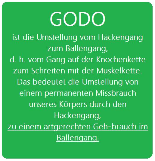 godo5